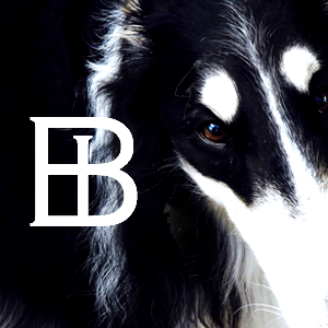 Borzoi International